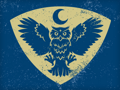 d2511 35 Wisdom Packed Owl Logo Designs
