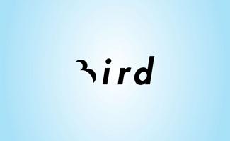 bird1 40 Clever Minimal Logo Designs