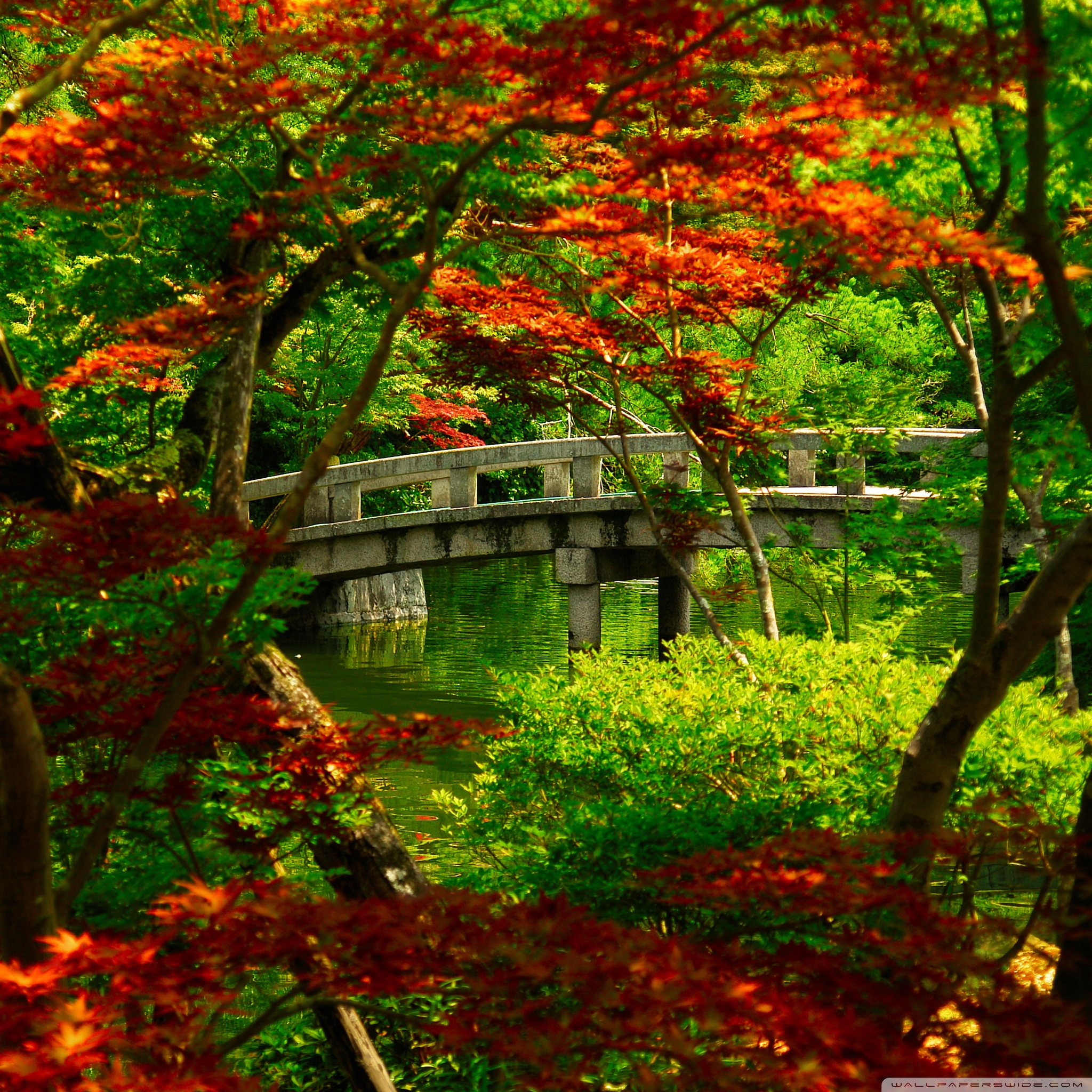 japanese garden kyoto wallpaper 2048x2048 40 Free HD Retina Display iPad 3 Wallpapers
