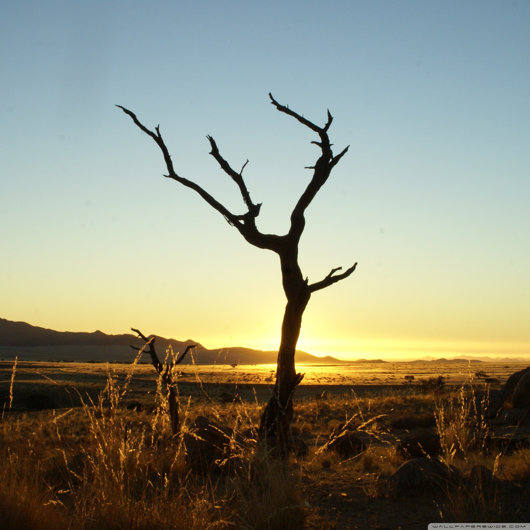 sunset namib desert wallpaper 2048x2048 40 Free HD Retina Display iPad 3 Wallpapers