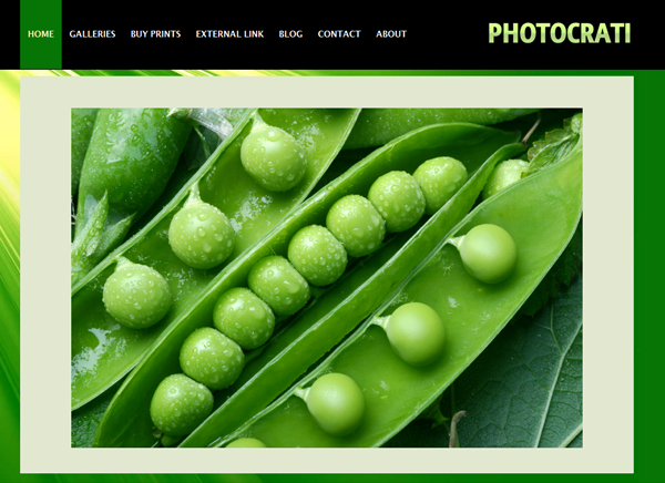 photocrati 40 Premium Responsive Portfolio WordPress Themes