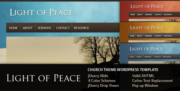 01 overview   large preview1 30 Charity, Non Profit and Donation Wordpress Themes