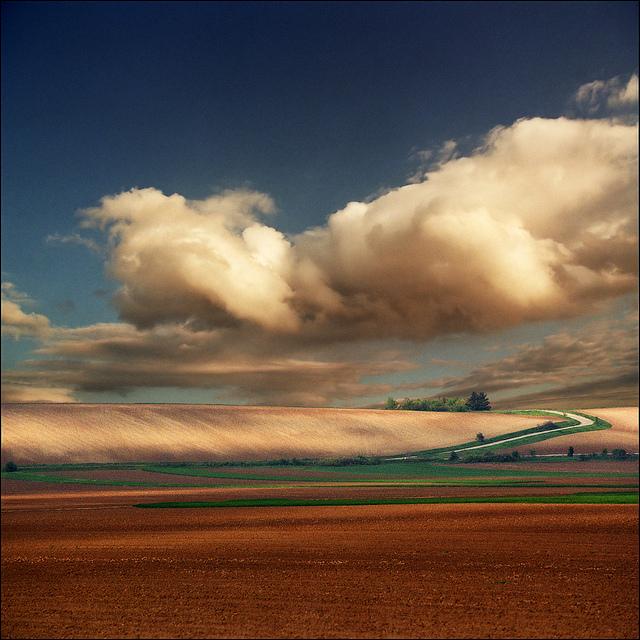 The Pannonian Plain