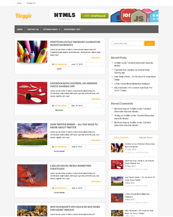 bloggie Free WordPress Themes Released in Summer 2012