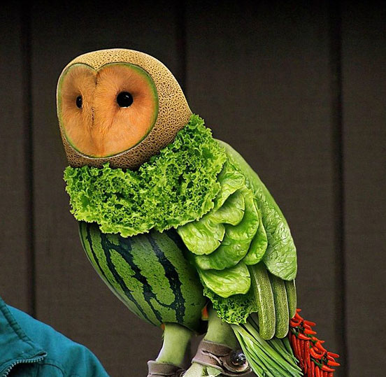 fruit owl l1 45 Visionary Examples of Creative Photography #11