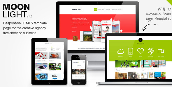 01 preview   large preview3 45 Creative Premium WordPress Themes