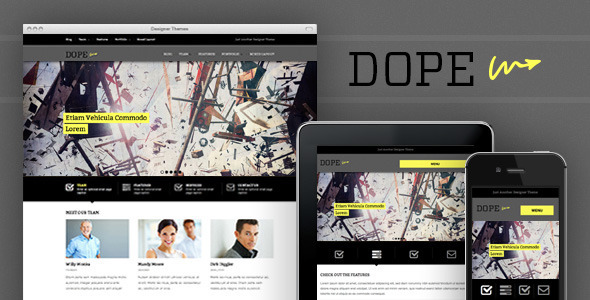 01 preview   large preview5 45 Creative Premium WordPress Themes