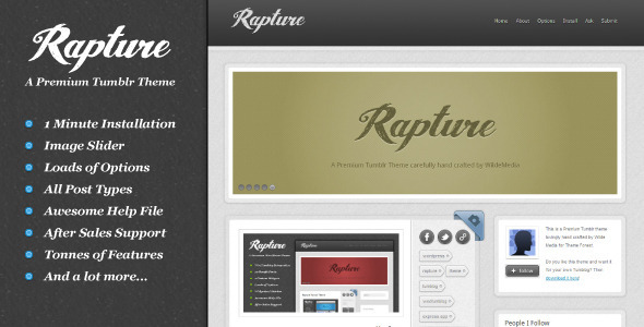 01 preview   large preview54 55 Elegant and Customizable Tumblr Themes