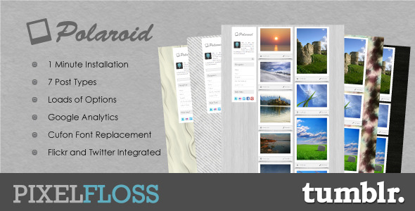 01 preview   large preview72 55 Elegant and Customizable Tumblr Themes