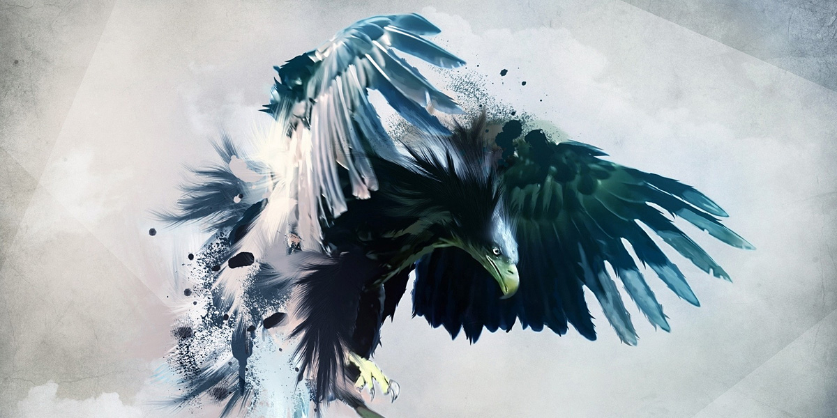 bird1 40 Free and Beautiful Twitter Covers