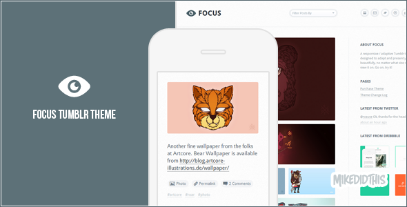 focus preview   large preview1 55 Elegant and Customizable Tumblr Themes