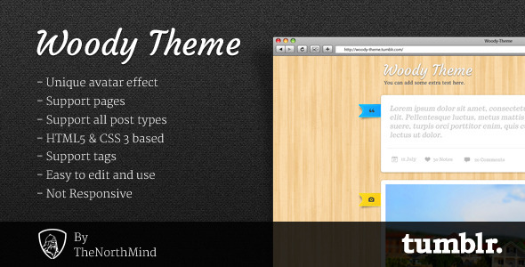preview   large preview11 30 Beautiful Premium Tumblr Themes