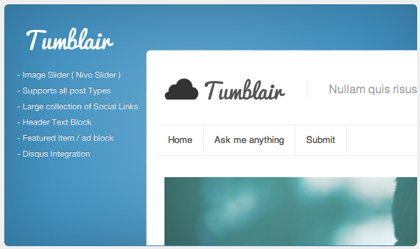 preview01   large preview1 30 Beautiful Premium Tumblr Themes