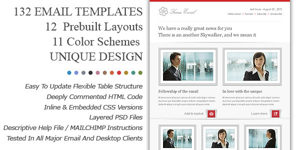 01 premiumemailnewslettertemplatessuccesspreview   large preview1 45 Email Templates For Your Marketing Campaign