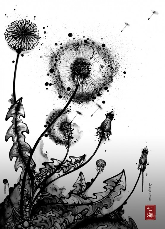 1271751316 3750 medium Black and White Illustrations by Nanami Cowdroy