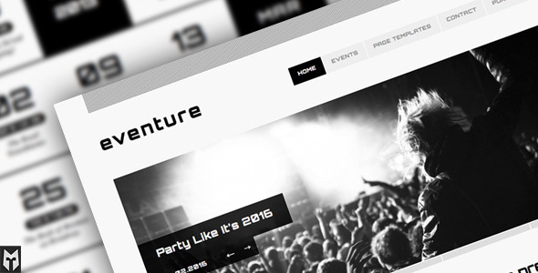 1 preview   large preview11 20 Premium Entertainment Wordpress Themes
