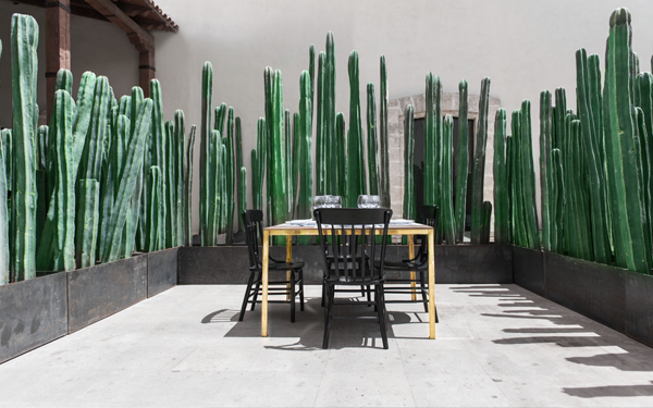 7601734a2463a75f143c4e3bd8d20c37 El Montero Restaurant in Saltillo Coahuila