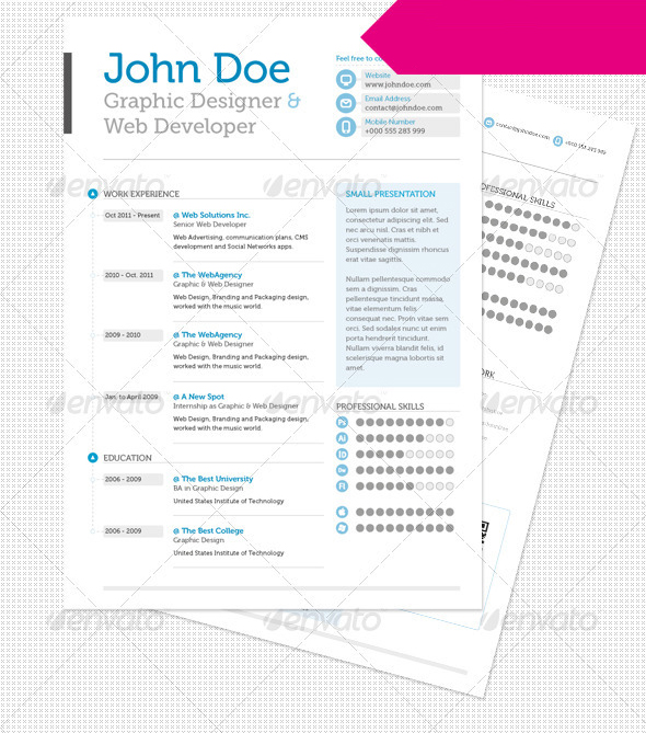 Clean & Professional Resume