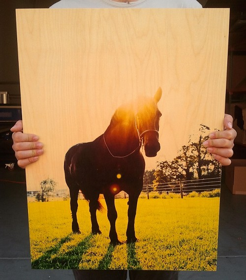 Woodsnap: Custom Photo Printing on Wood