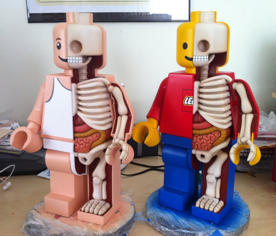 large anatomical lego men in progress by freeny d534imr Creative Character Anatomy Sculptures by Jason Freeny