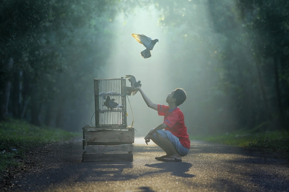lets fly with me taufi sudjatnika photography 2 Life in Indonesia by Taufik Sudjatnika