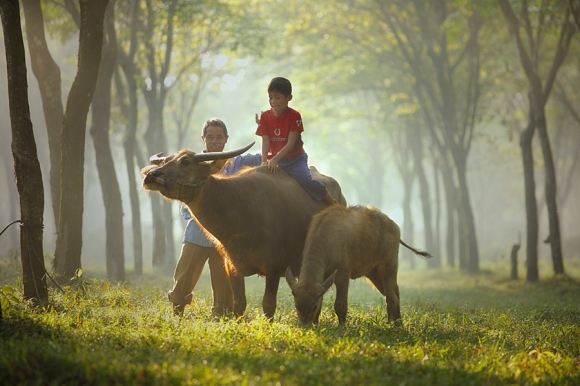 lets fly with me taufi sudjatnika photography 3 Life in Indonesia by Taufik Sudjatnika