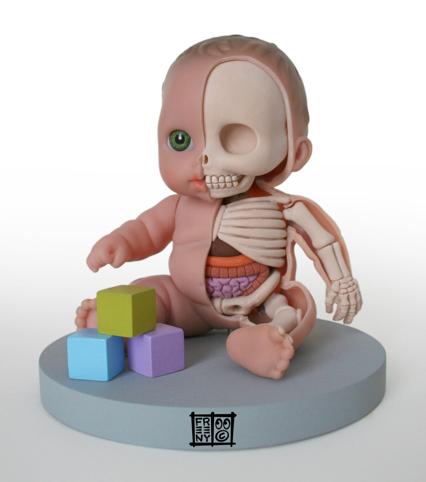 lil   custie anatomical model by freeny d49l1pj Creative Character Anatomy Sculptures by Jason Freeny