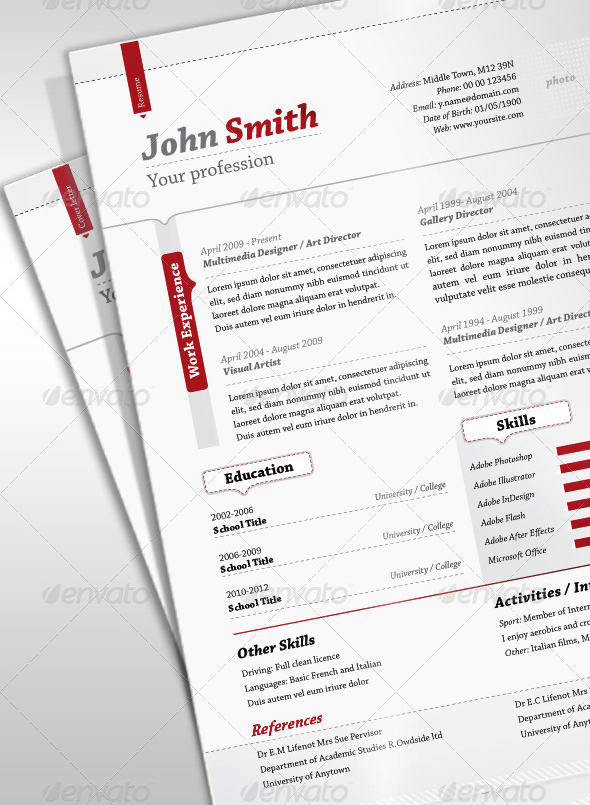 Professional resume styles 2012
