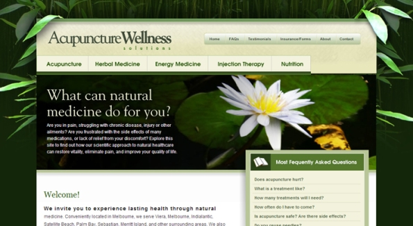 Acupuncture Wellness Solutions